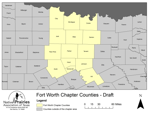 Fort_Worth_counties